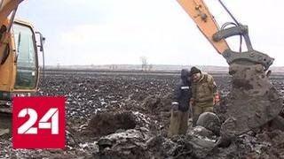 Эхо войны: приморские поисковики подняли из болота самолет Пе-2 - Россия 24