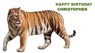 Christopher  Animals & Animales - Happy Birthday