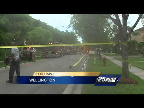 2 kittens killed in Wellington house fire
