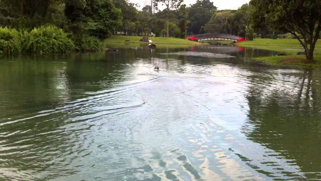 Ft007 Race Boat Maiden Bishan Amk Park 18th May 2013