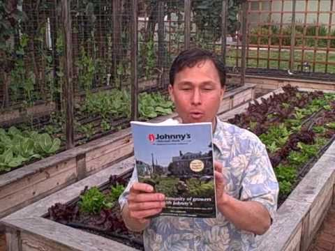 Top 5 Seed Catalogs for 2011 to Grow Vegetables & Herbs in your Home Garden