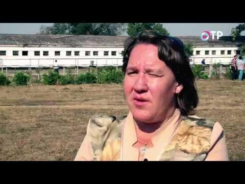 Специальный репортаж на ОТР.  Золото Дона (06.11.2015)