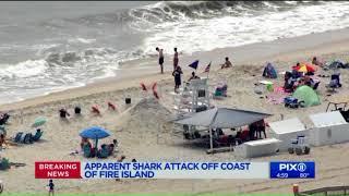 2 children bitten in possible shark attacks at Fire Island beaches