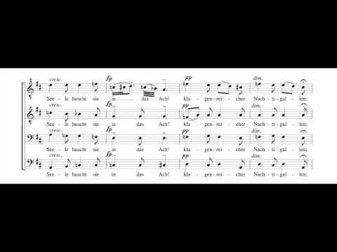 Шуберт Франц - Liebe, Op 17, No. 2