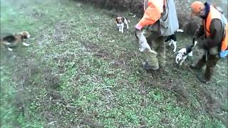 Watch Ozzy Fudd Kill The Wabbit video