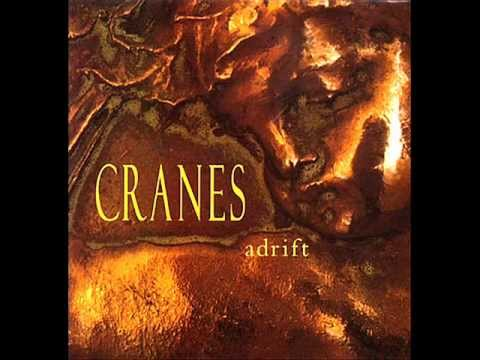 Cranes - Everywhere