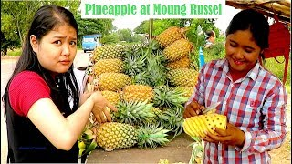Travel from Thmor Kol to Krong Battambang & Moung Russei District | Travel Guide in Cambodia, Asia