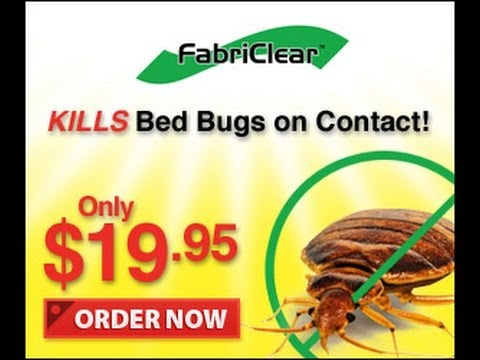 pics How to Keep Bed Bugs Out of Your House