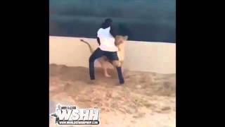 Man Gets Chased By A Lion After Losing A Bet