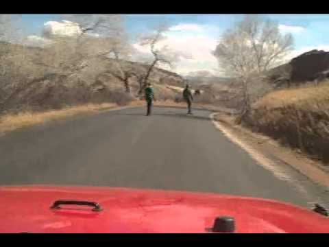 Longboarding in Colorado (Downhill)