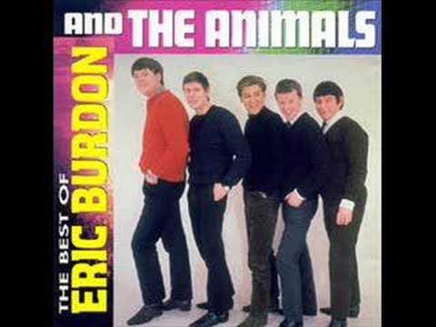 Animals - Maudie