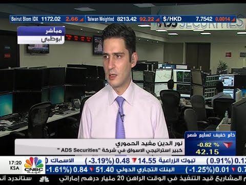 Nour Eldeen on CNBC Arabia 17.Aug.2015