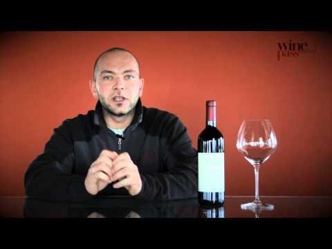 Wine Tasting - Conterno Fantino - Barolo Sorì Ginestra