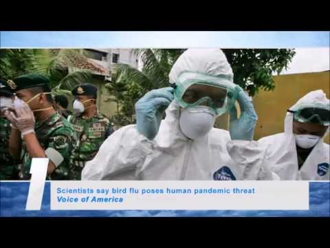 Scientists say bird flu poses human pandemic threat (Second Coming Watch Update #142)