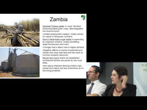 Ruth Hall - The Political Economy of Agricultural Policy Processes in Africa
