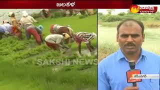 Heavy rains in Karimnagar    ఉమ్మడి కరీంనగర్ జిల్లాలో విస్తారంగా వర్షాలు