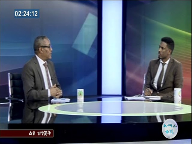 Ethiopia: Interview With Ato Gedu Andargachew On Current Situations  Part 1