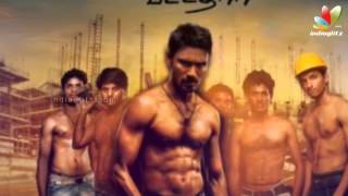 Velai illa Pattathari Box office Collections | Dhanush,  Amala Paul | VIP Success Party