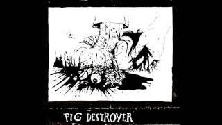 Watch Pig Destroyer Seven And Thirteen video