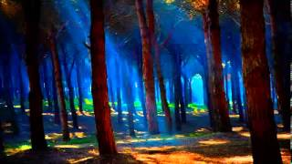 Cricket sound   8 hours of nature forest sounds full night relax meditation zen music