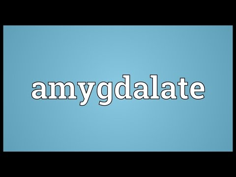 Header of amygdalate
