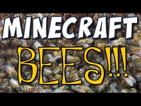 Minecraft - BEES!!!
