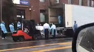 video: Watch: Shocking video appears to show body bags forklifted into lorry in New York City
