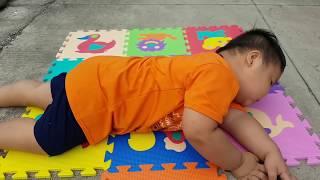 Trò Chơi Bé Xếp Hình Con Vật ❤ ChiChi ToysReview TV ❤ Đồ Chơi Trẻ Em Baby Toys