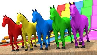 Learn Colors with Horse - Colors Learning Videos for Children - Animation for Kids