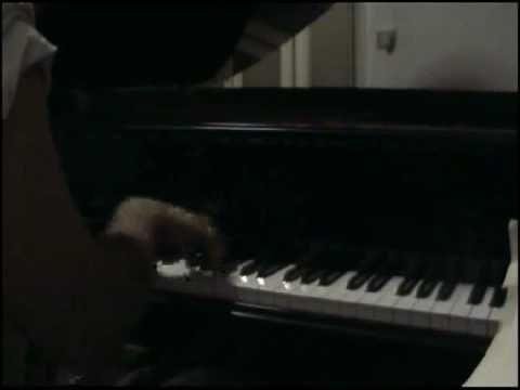 Knocking on Heaven's Door.   piano: danilo romanov Improvisation.