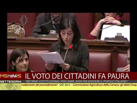 www.movimento.info – Movimento 5 stelle report n.08 dal 27 maggio al 3 giugno 2013
