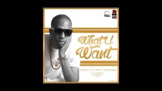 Naeto C - What You Want Ft. BOJ x Ajebutter22 (OFFICIAL AUDIO 2014)