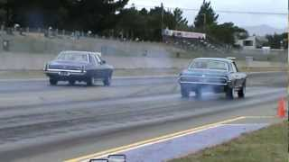 Drag race - Cougar vs Statesman