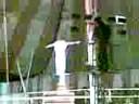 Lucky Irani Circus In Karachi 6 image