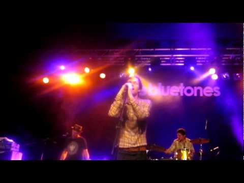 Bluetones - Tiger Lily