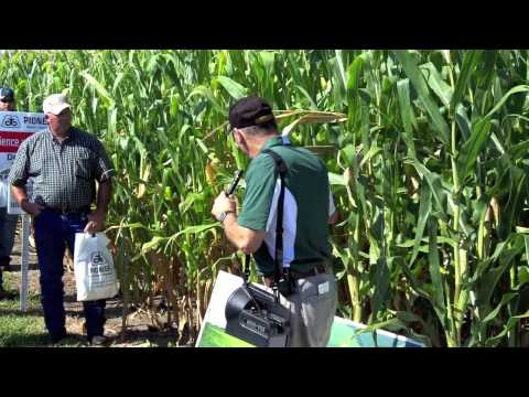Pioneer Hi-Bred Crop Technology Field Day - Nitrogen Use