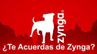 RICH PLAYERS OF ZYNGA POKER at $5B/$10B TABLE | 720p60