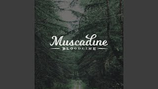 Muscadine Bloodline Depending On The Night