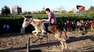 قصة أحمد عبد الودود مع قفز الحواجز بالحمار: «دخلوني نادي الفروسية»
