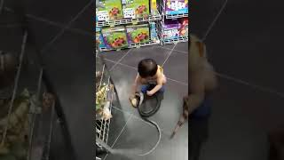 Bonbon chơi rắn giả