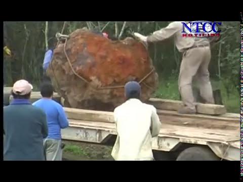 Meteorito -N.T.C.C noticias quimilí..mp4