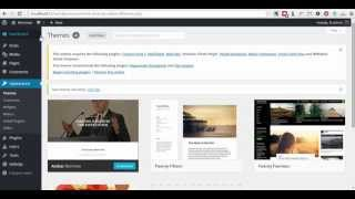 Nominee WordPress Theme install and demo content import