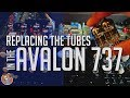 download lagu      REVIVING MY AVALON 737! Replacing the Tubes...DID IT HELP? VOCAL TEST    gratis