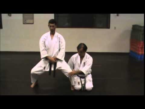 Treinamento A 2 Das Bases Zenkutsu, Kiba E Kokutsu Dachi video