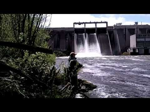 Salmon Fishing Ireland 2013. The Dam Fishery. ( HD )