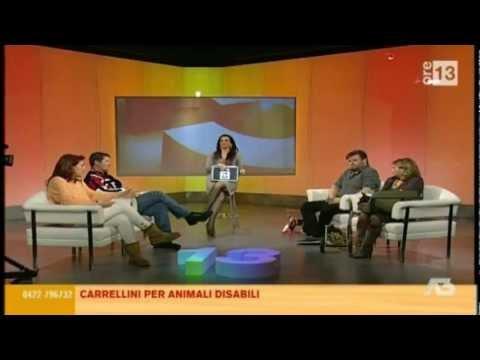 """carrellini disabili in TV """" parte 1″ di 5"""