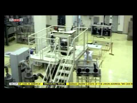 Arash Aramesh Commenting on EU and US Sanctions Against Iran (Sky World News)