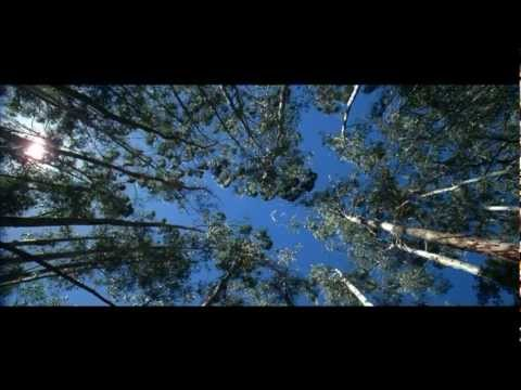 "Tourism Australia's ""There's Nothing Like Australia"" campaign"