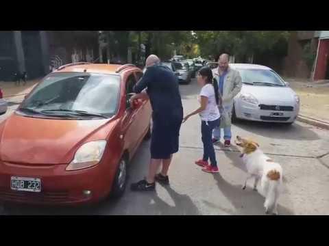En Argentina Así se Trata a quien Abandona a su Mascota.