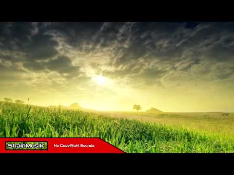 Cayman feat. Hendersin - Trying   StrainMusiK